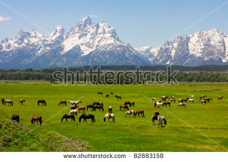 Grand Tetons clipart #6, Download drawings