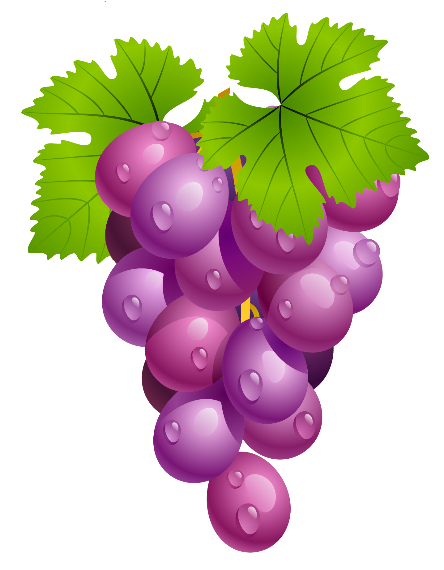 Grapes clipart #17, Download drawings