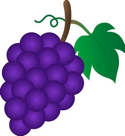 Grapes clipart #6, Download drawings