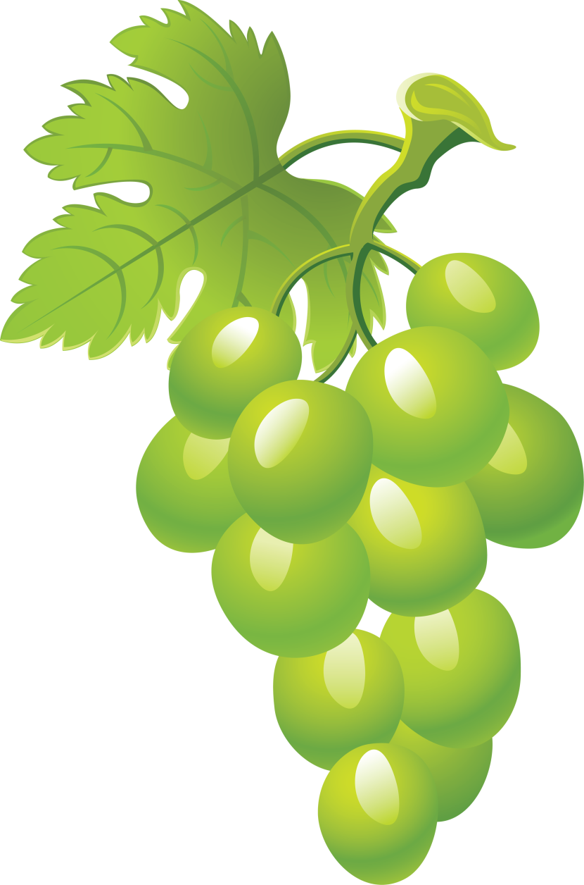Grapes clipart #8, Download drawings