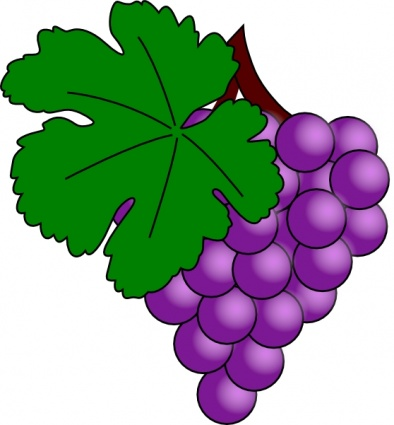 Grapes clipart #9, Download drawings
