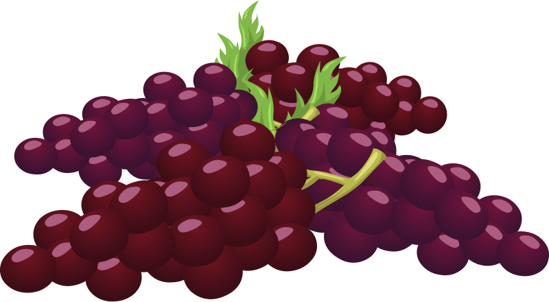 Grapes clipart #15, Download drawings