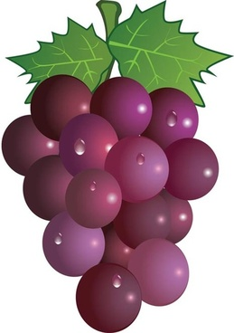 Grapes clipart #14, Download drawings