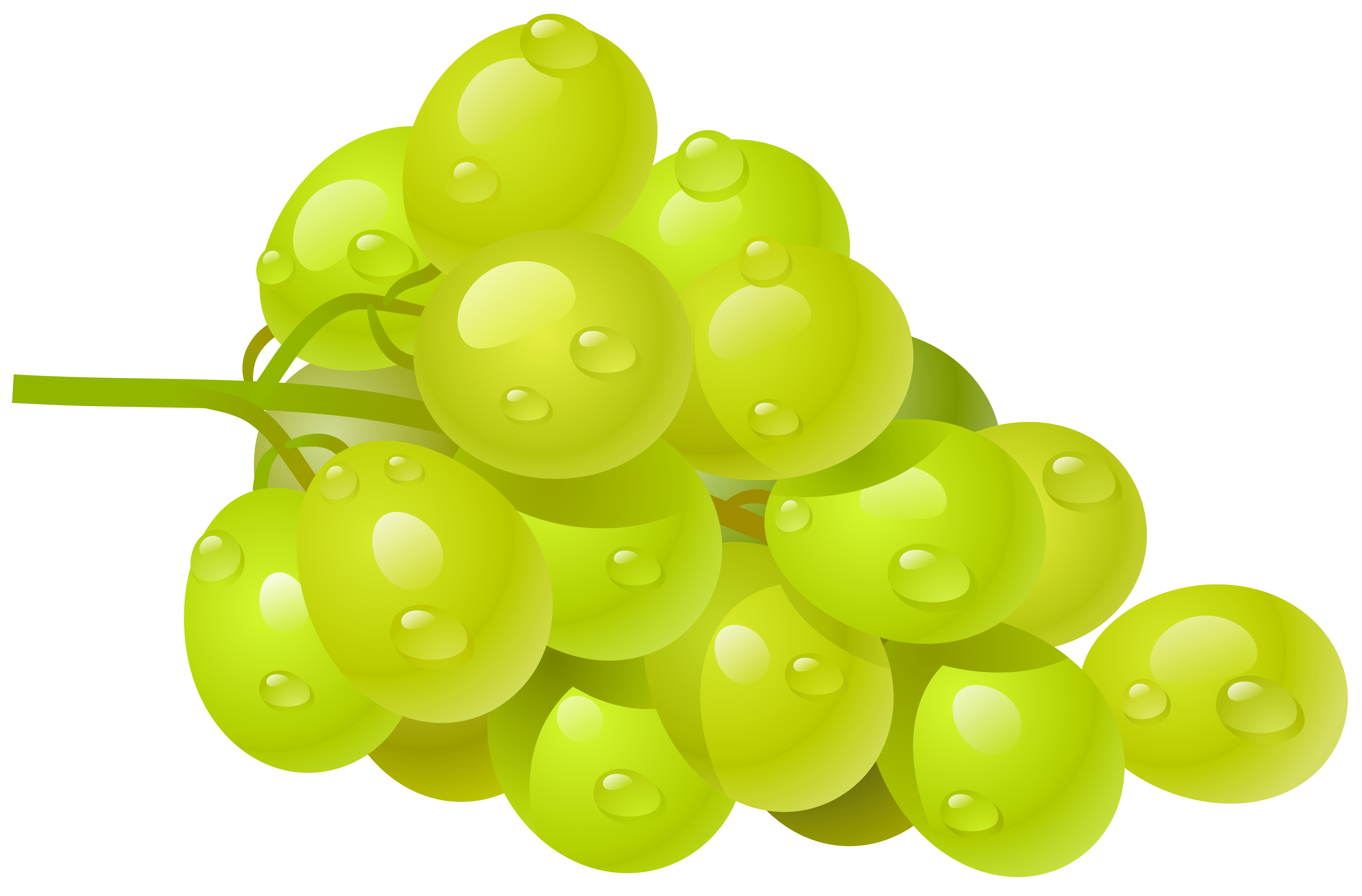 Grapes clipart #19, Download drawings