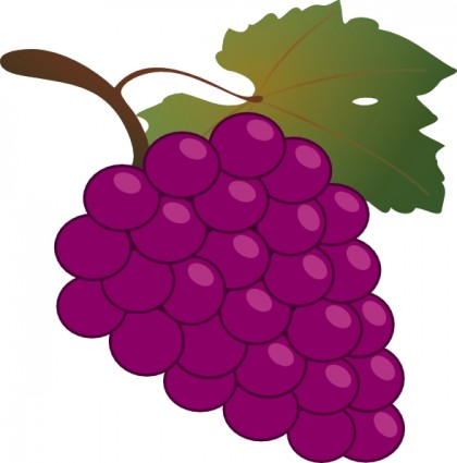 Grapes clipart #1, Download drawings