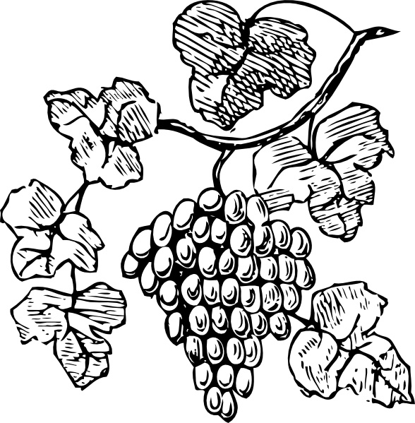 Grapes svg #8, Download drawings