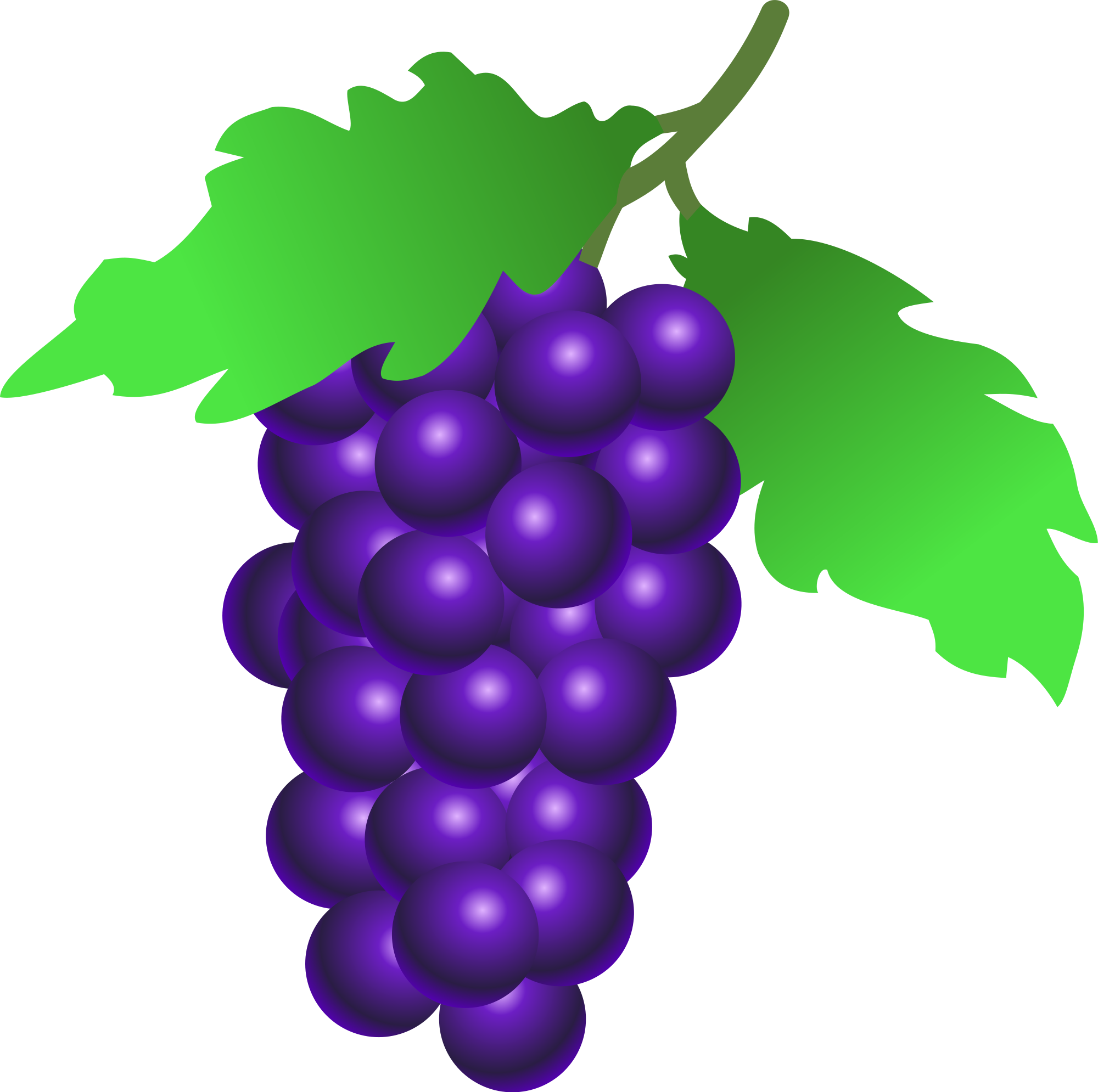 Grapes svg #16, Download drawings
