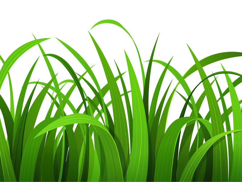 Grass clipart #16, Download drawings