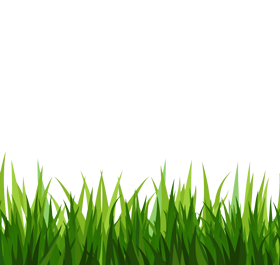 Grass clipart #18, Download drawings