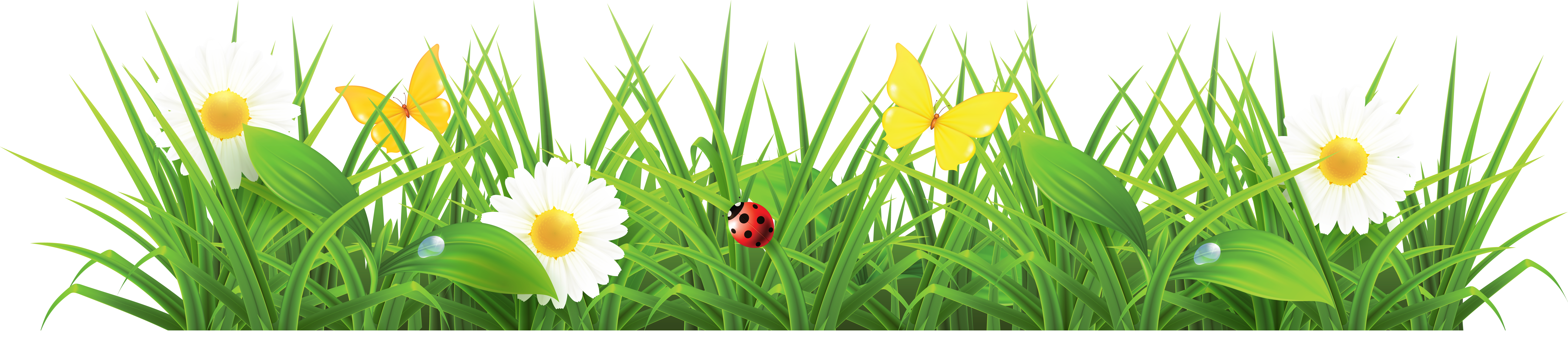 Grass clipart #11, Download drawings