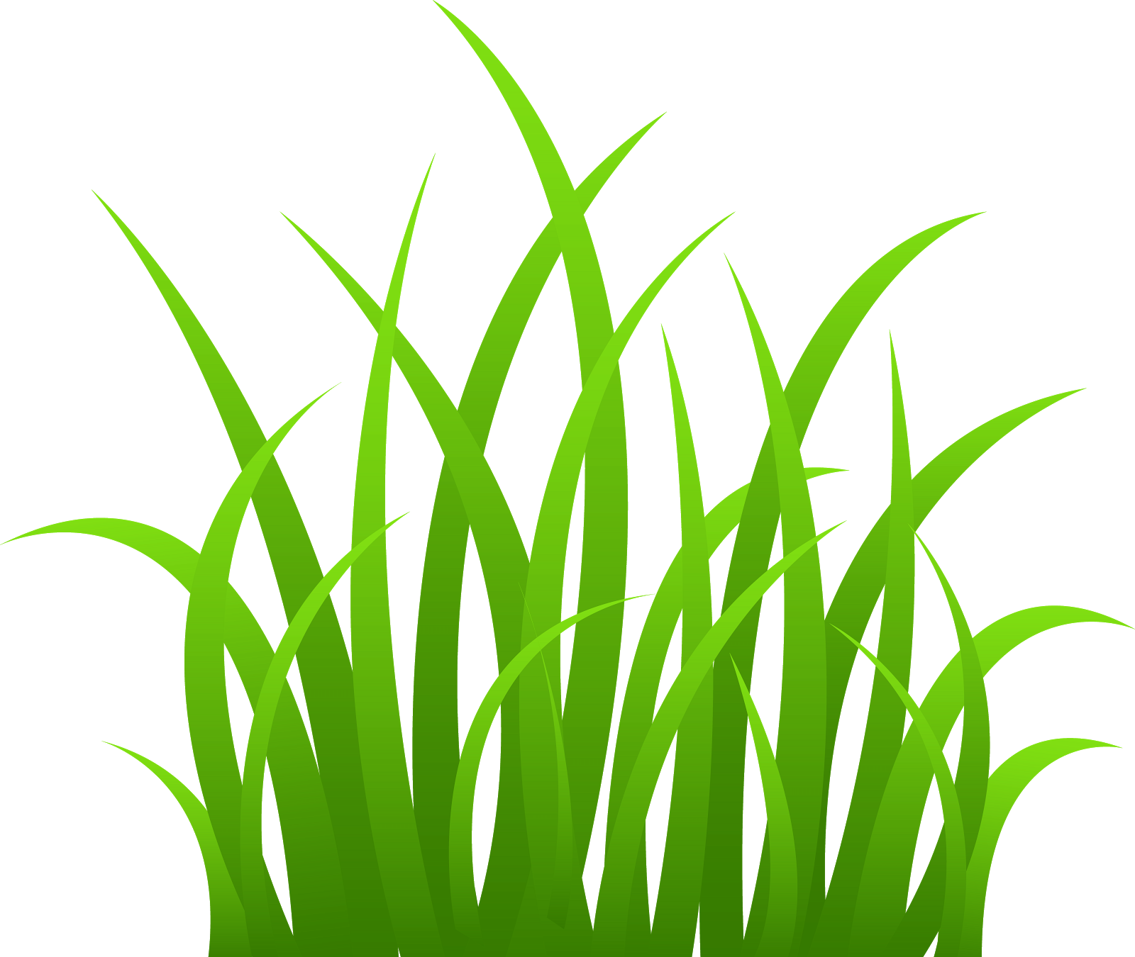 Grass clipart #17, Download drawings