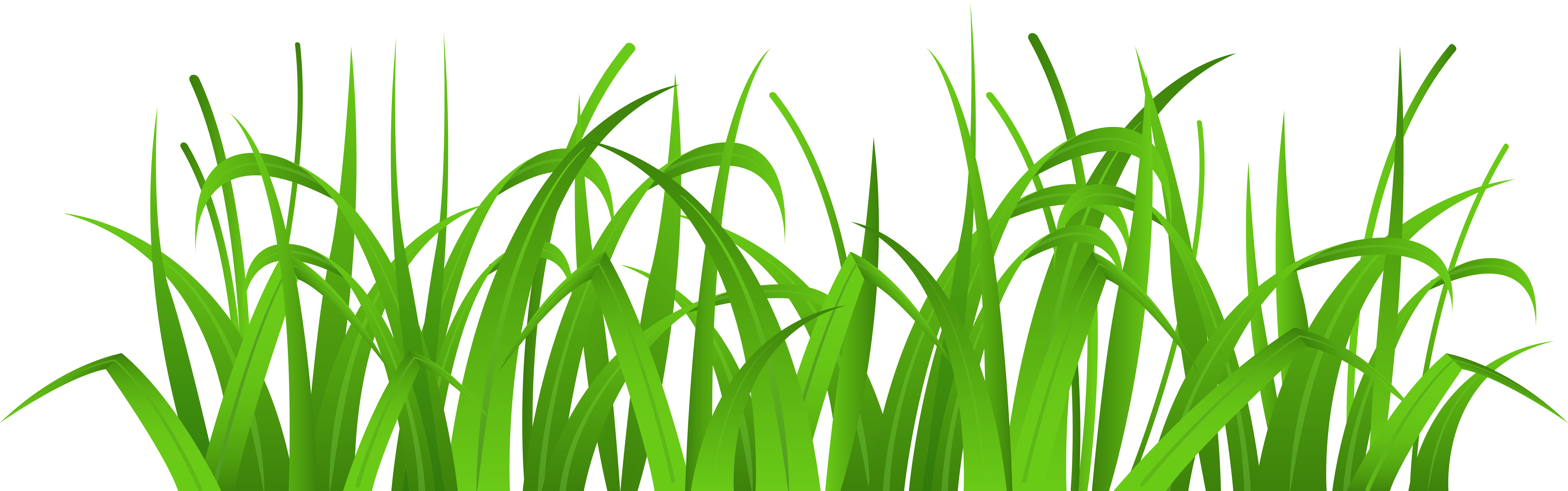 Grass clipart #9, Download drawings