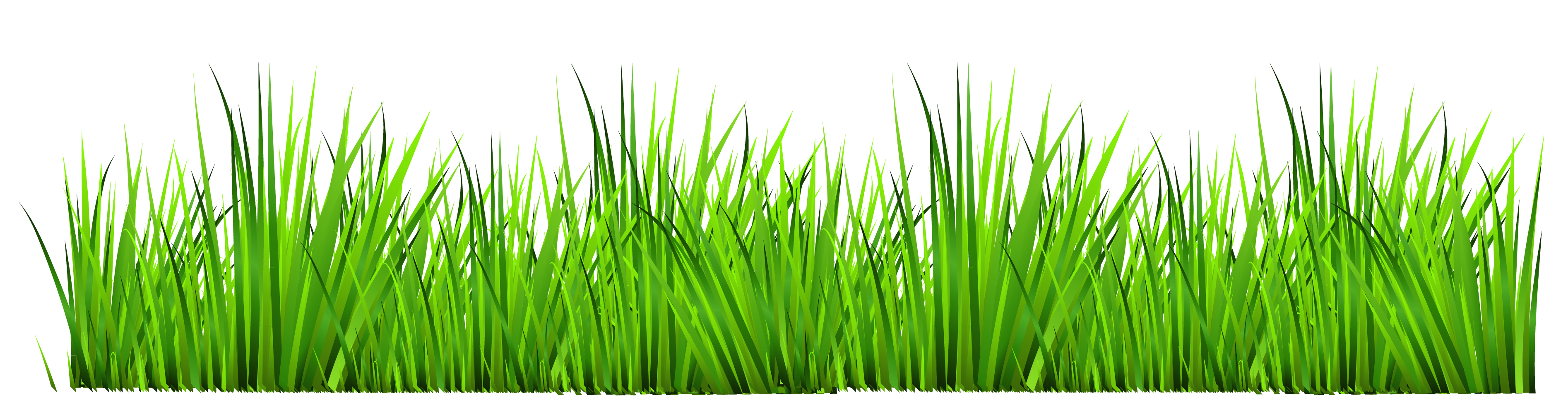 Grass clipart #8, Download drawings