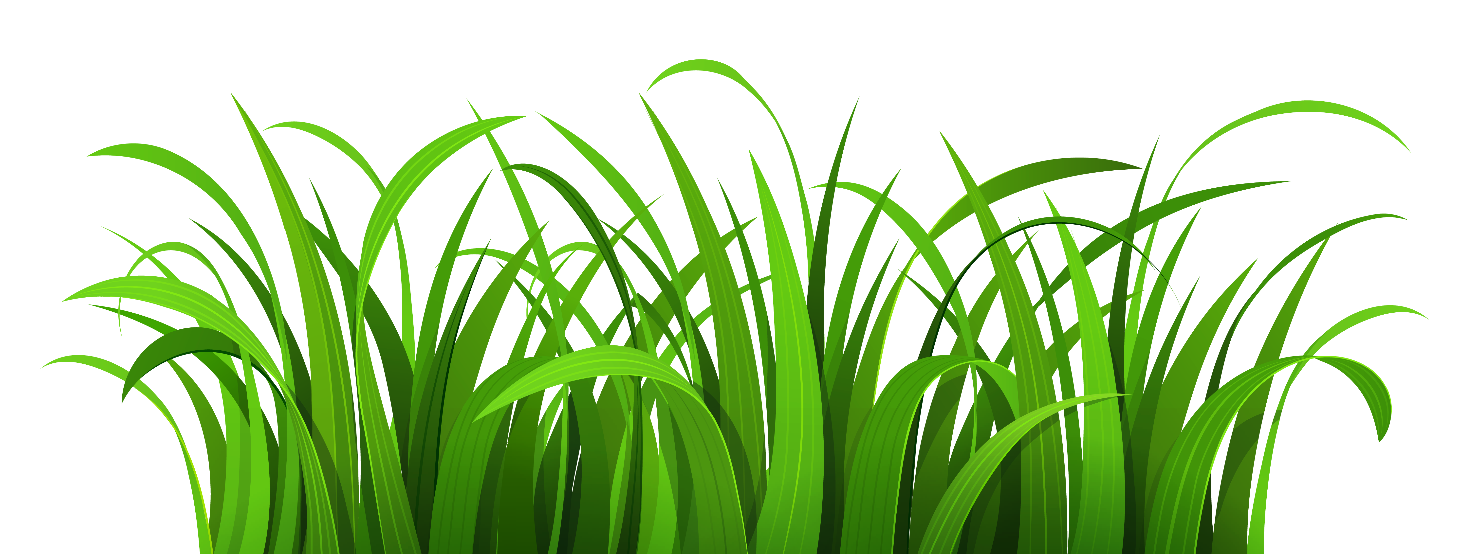 Grass clipart #2, Download drawings