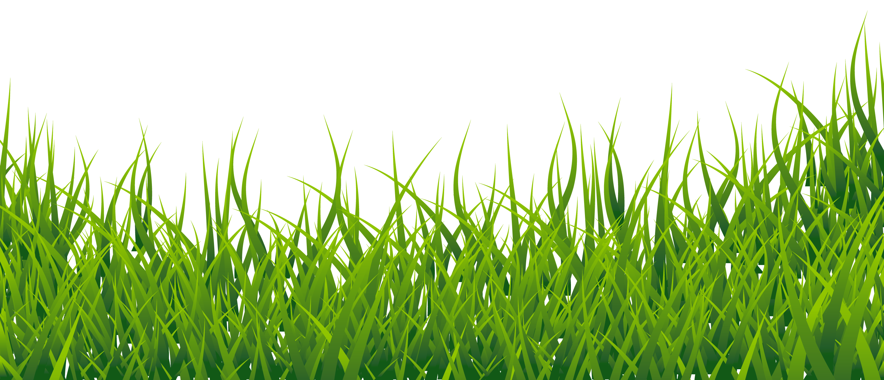 Grass clipart #7, Download drawings