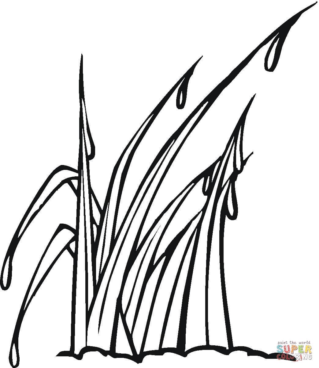 Dew coloring #16, Download drawings