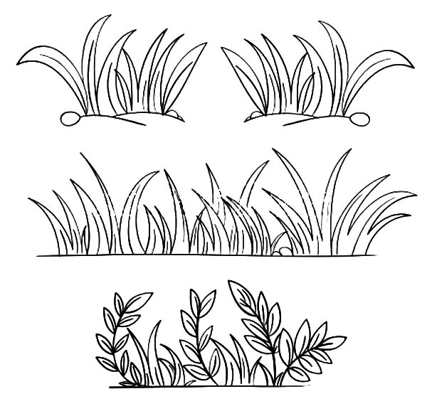 Grass coloring #1, Download drawings