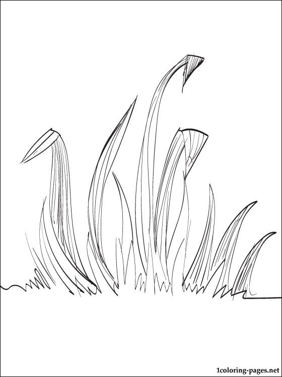Grass coloring #18, Download drawings
