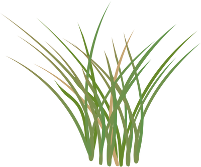 Grass svg #1, Download drawings