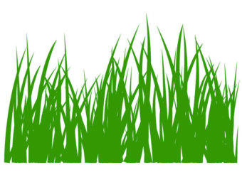 Grass svg #19, Download drawings