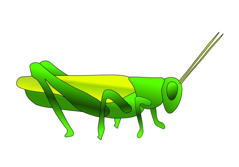 Grasshopper clipart #4, Download drawings