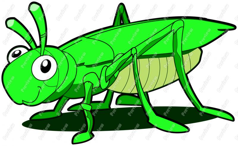 Grasshopper clipart #9, Download drawings