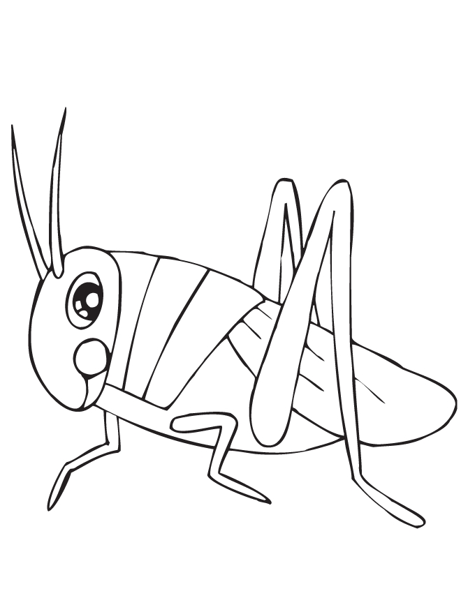 Grasshopper coloring #14, Download drawings