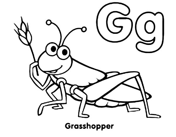 Grasshopper coloring #10, Download drawings