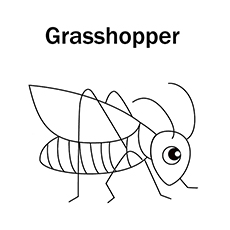 Grasshopper coloring #19, Download drawings