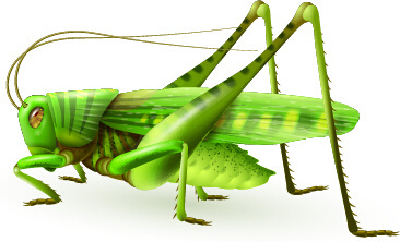 Grasshopper svg #13, Download drawings