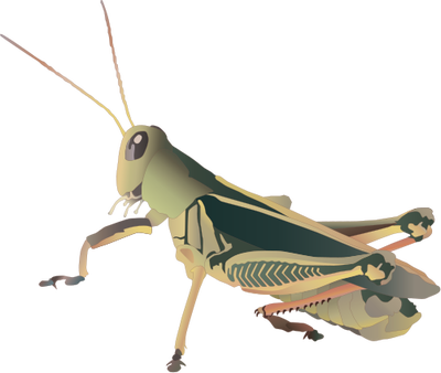 Grasshopper svg #19, Download drawings
