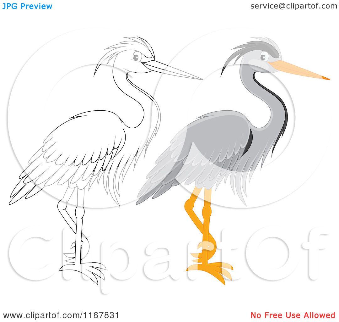 Gray Heron clipart #12, Download drawings