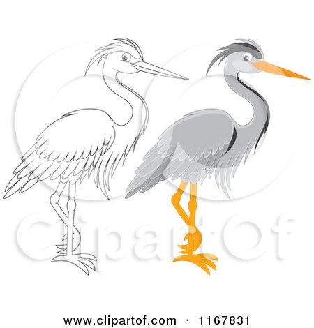 Gray Heron clipart #11, Download drawings