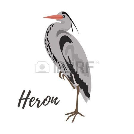 Gray Heron clipart #15, Download drawings