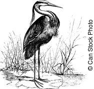 Gray Heron clipart #18, Download drawings