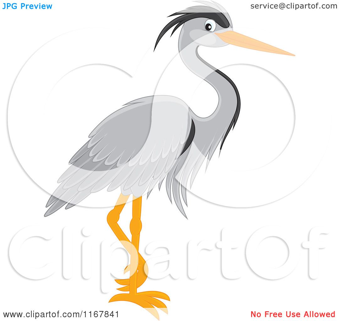 Gray Heron clipart #7, Download drawings