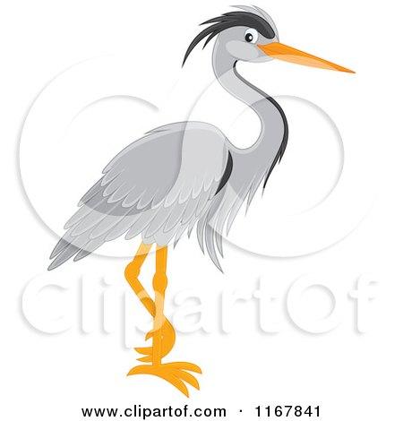 Gray Heron clipart #5, Download drawings