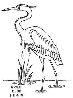 Great Blue Heron coloring #15, Download drawings