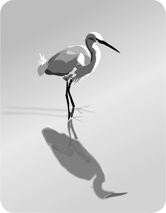 Gray Heron svg #7, Download drawings