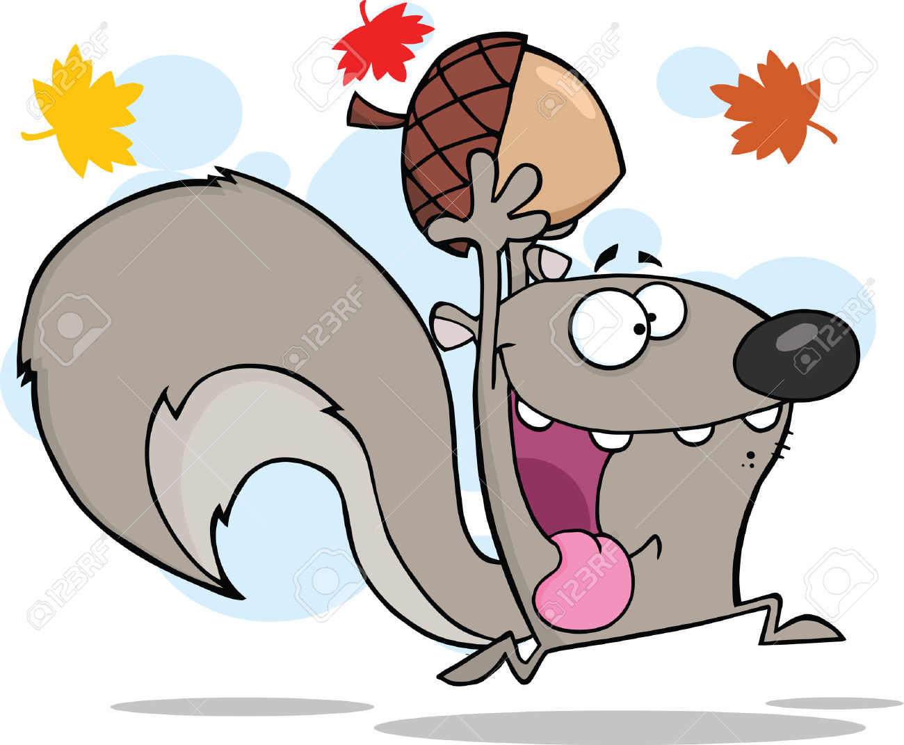 Gray Squirrel clipart #5, Download drawings