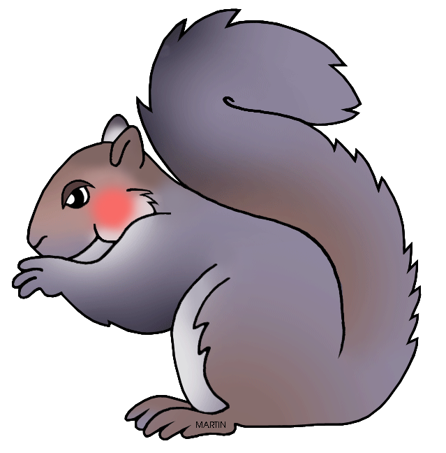 Gray Squirrel clipart #12, Download drawings