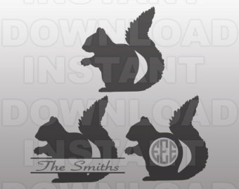 Gray Squirrel svg #14, Download drawings