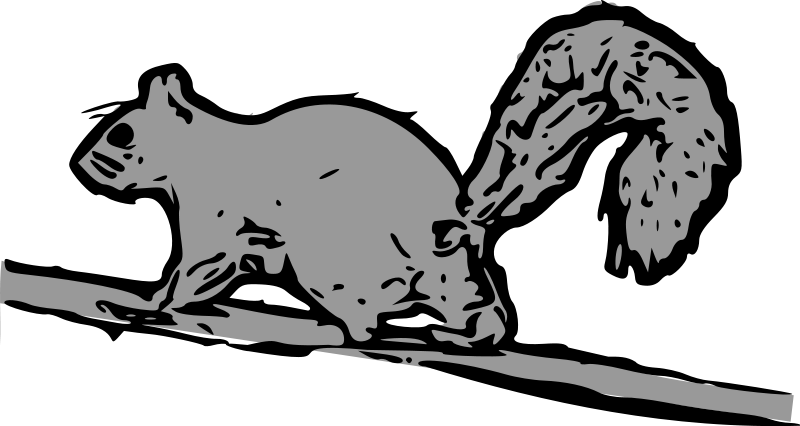 Gray Squirrel svg #20, Download drawings
