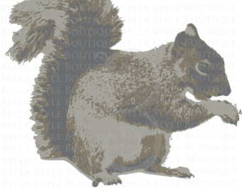 Red Squirrel svg #17, Download drawings