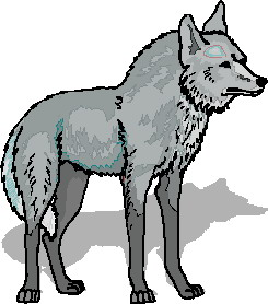 Gray Wolf clipart #4, Download drawings