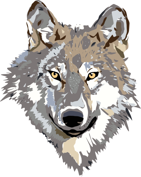 Gray Wolf clipart #12, Download drawings