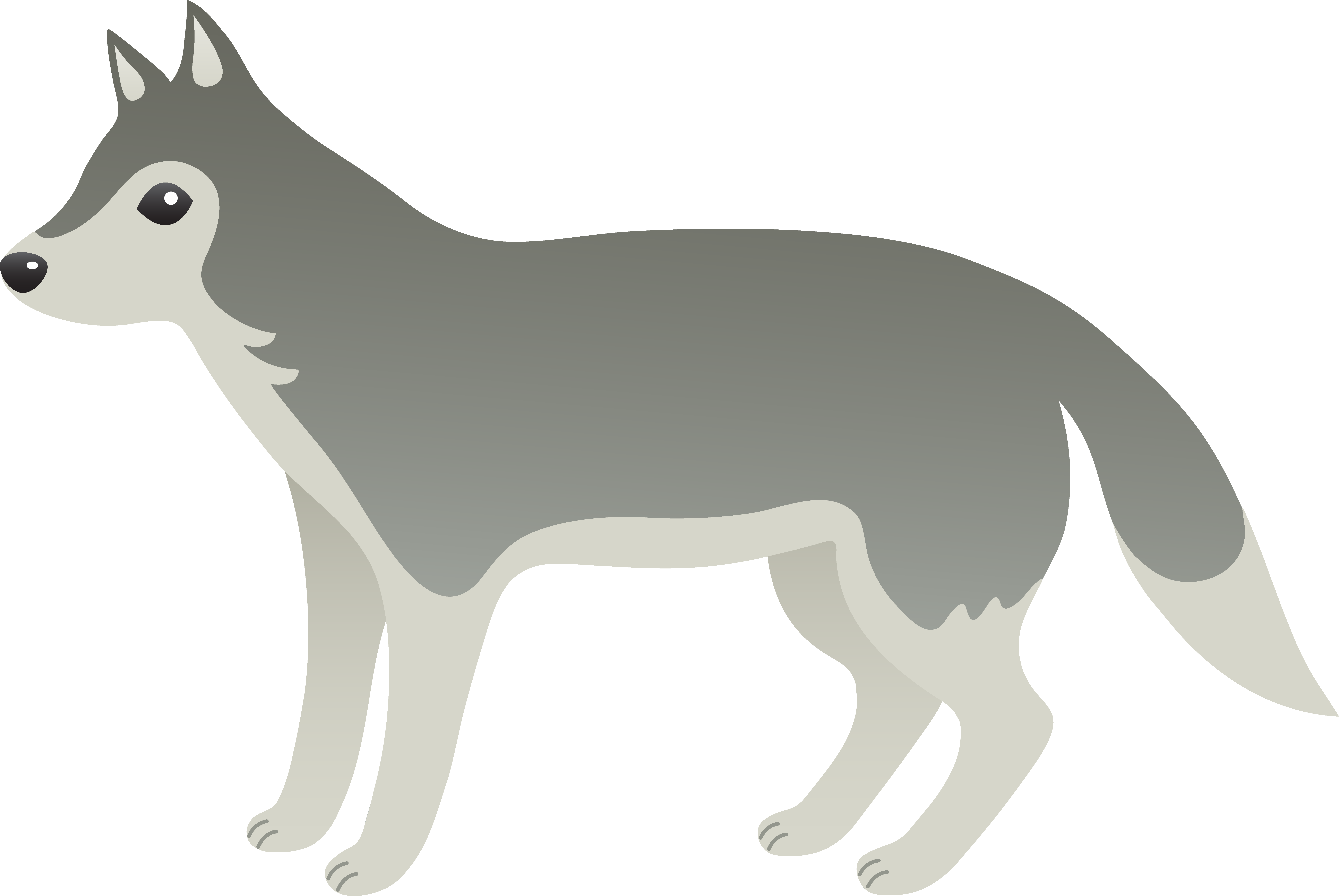 Gray Wolf clipart #1, Download drawings