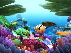 Great Barrier Reef clipart #8, Download drawings
