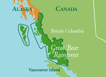 Great Bear Rainforest svg #14, Download drawings