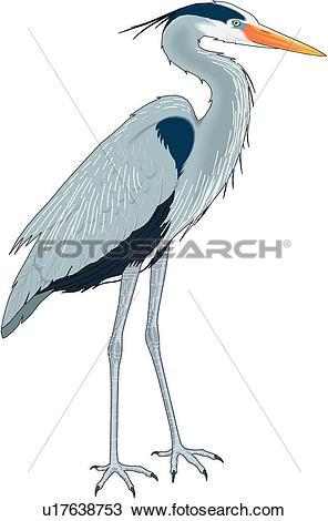 Green Heron clipart #19, Download drawings